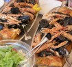 Antropoti-Yachts-Croatian-Cuisine-seafood-gastronomy-sailing