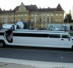 Antropoti-Hummer-H2-lux-limousine4